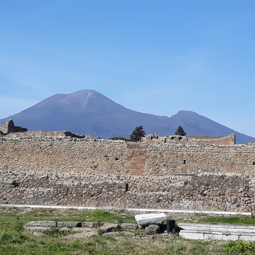 Pompeya: Visita guiada