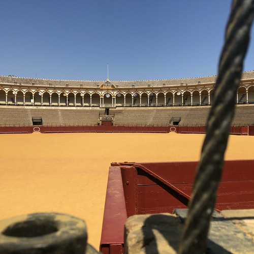 Real Maestranza: Guided Tour with Optional Seville Cathedral Visit