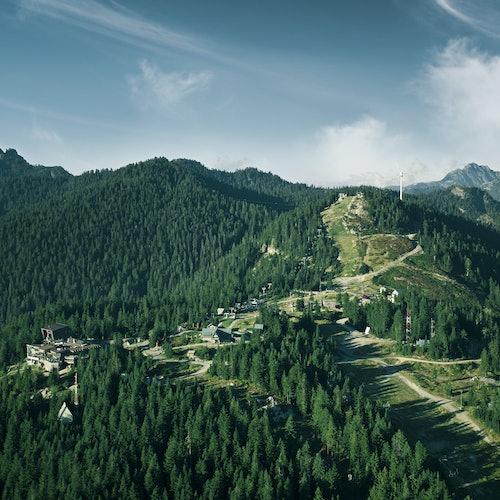 Montaña Grouse: Admisión general