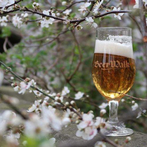 BeerWalk Amberes