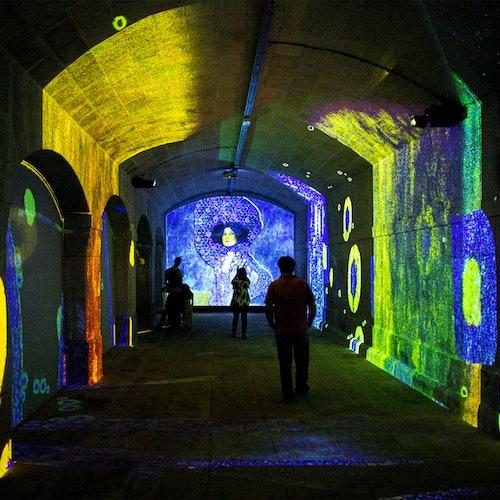 Impressive Monet & Brilliant Klimt en Oporto: Sin colas
