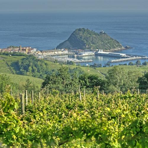 Bodega de txakolí y Getaria: Tour guiado desde San Sebastián