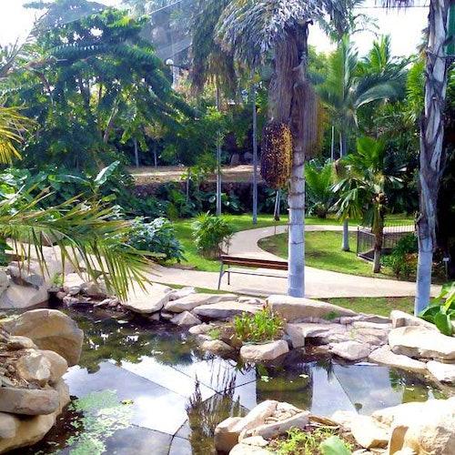 Palmetum de Santa Cruz de Tenerife