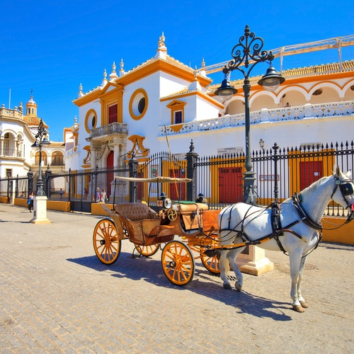 Seville Free Guided Tour
