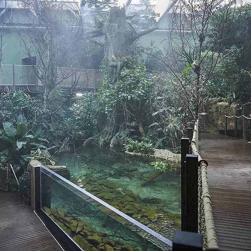 AQUATIS Aquarium-Vivarium