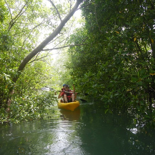 Pulau Ubin Kayaking & Cycling Full-Day Tour with Lunch