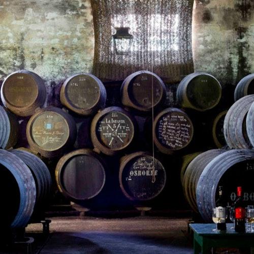 Excursión de ida y vuelta de Cádiz a El Puerto de Santa María + Cata de vinos