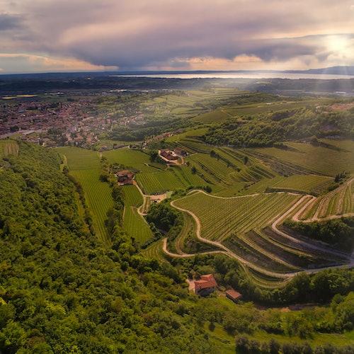 Amarone Wine Tasting in Verona