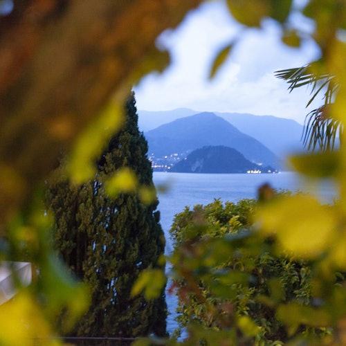 Villa Cipressi Varenna: Jardines botánicos