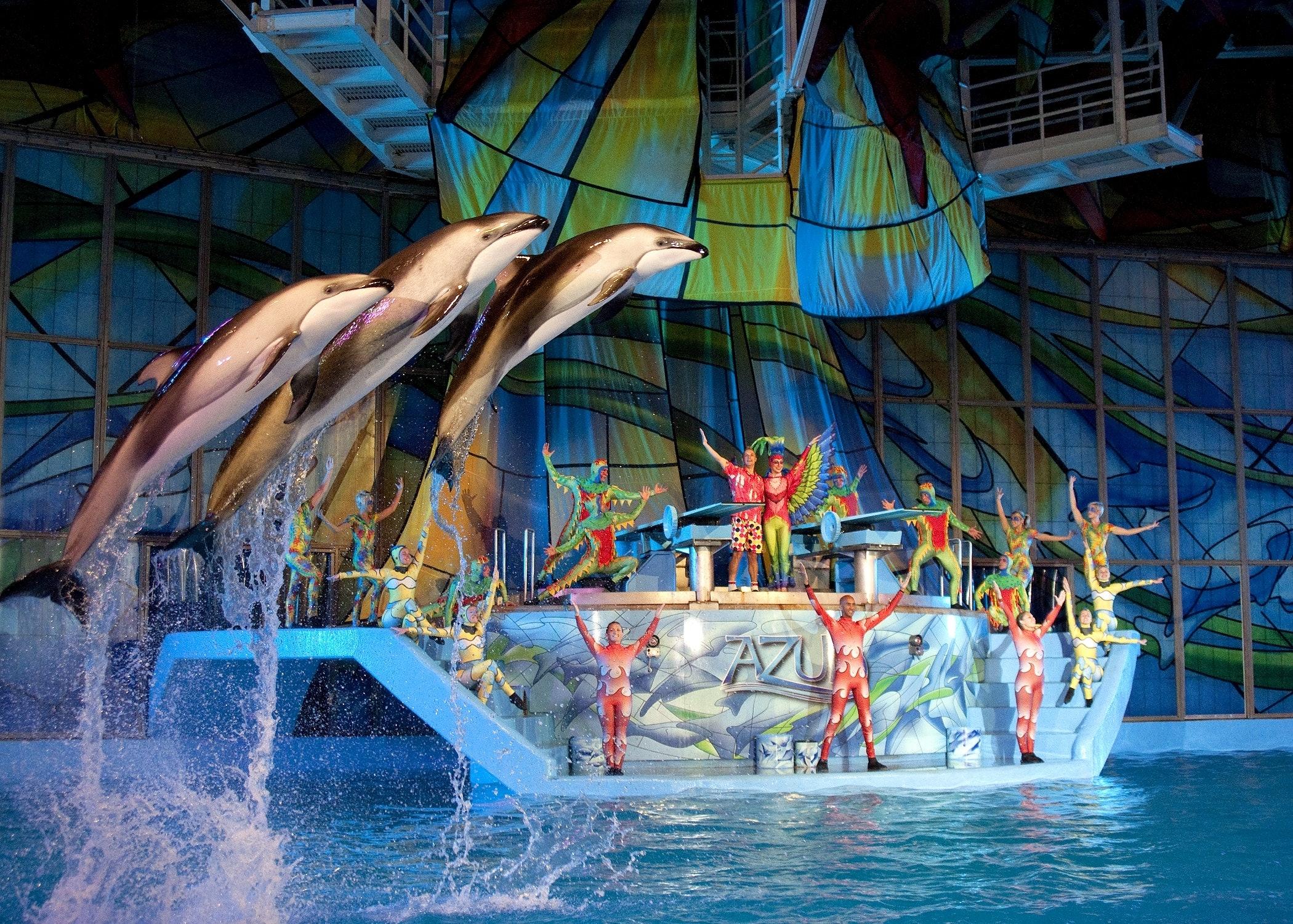 Tickets For Seaworld San Antonio Tiqets