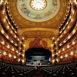 Walking Tour & Teatro Colón Visit