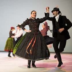Hungarian Dance Performance in the Danube Palace
